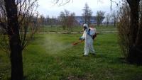 Водоемы и прибрежные зоны волгоградского региона обработают от комаров и клещей