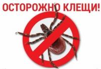 Управление Роспотребнадзора по Волгоградской области информирует о наступлении эпидемического сезона инфекций, передающихся клещами