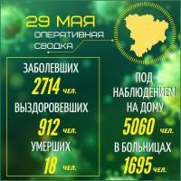 Оперативная сводка на 29 мая 2020 года