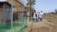 Более 120 студентов-медиков помогают врачам в медучреждениях Волгоградской области