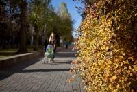 Волгоградская программа комплексной поддержки детей с инвалидностью получила федеральный грант