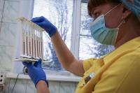 В Волгоградской области сформирован запас крови для получения антиковидной плазмы
